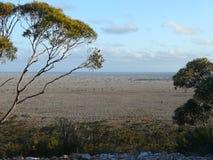 理想的平面的大草原。 免版税图库摄影