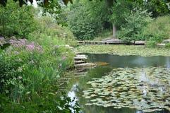 理想的池塘 免版税库存图片