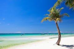 理想的海滩 免版税图库摄影
