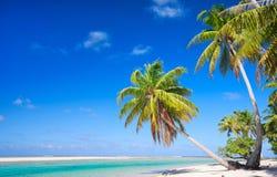 理想的热带海滩 库存照片