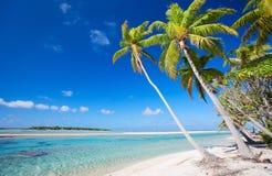 理想的热带海滩 免版税库存图片