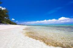 理想的白色海滩在加勒比 免版税库存照片