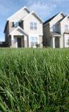 理想的草坪 免版税库存照片