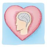 理智和情感被连接的器官 免版税库存图片