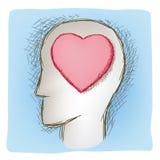 理智和情感被连接的器官 库存照片