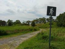 理查A Rutkowski公园,供徒步旅行的小道,巴约讷, NJ,美国 免版税库存图片