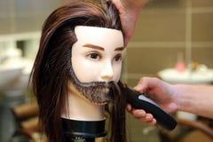 整理棕色头发的理发师学生 免版税库存照片