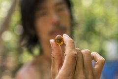 琥珀片断在亚洲人的供以人员手 关闭琥珀色的石头-次贵重的矿物 免版税图库摄影