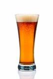 琥珀色的啤酒 免版税库存图片