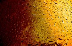 琥珀色的啤酒 库存图片