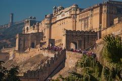 琥珀色的堡垒斋浦尔印度的郊区知道与搭载小山所有游人的他们的大象护卫舰 库存图片