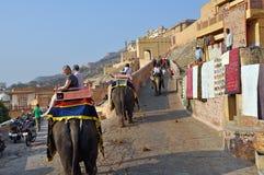 琥珀色的大象堡垒印度乘驾 库存图片