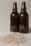 琥珀色的麦芽和瓶 免版税库存照片