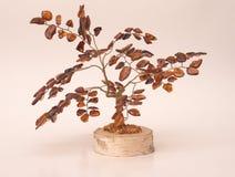 琥珀色的结构树 免版税库存图片