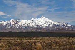 瑙鲁霍伊火山全景在东格里罗国家公园 它以为特色当在魔戒影片的登上死命 免版税库存图片