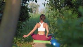 瑜伽体育,做与身体掀动的莲花坐的健身女孩锻炼对边坐木桥本质上 股票视频