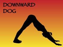 瑜伽妇女向下狗姿势 免版税库存图片