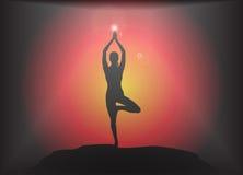 瑜伽树姿势强光背景 库存照片