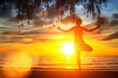 瑜伽由妇女剪影的树姿势与日落 免版税库存图片