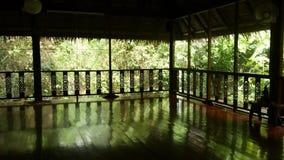瑜伽的室和凝思在公园 位于中部的瑜伽和凝思会议的空的宽敞的房间  股票录像