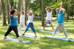 瑜伽老师和前辈在公园 免版税图库摄影