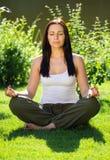 瑜伽 15个妇女年轻人 库存图片