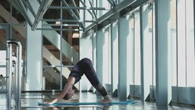 瑜伽 执行asana的少妇招呼对太阳 股票视频
