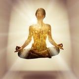 瑜伽concept3 免版税库存照片