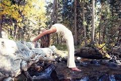 瑜伽自然 免版税库存图片