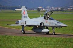 瑞典人空军队17翼 库存照片
