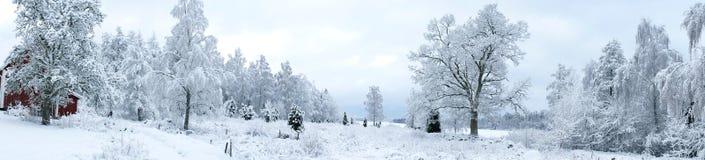 瑞典冬天风景 库存照片