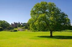 瑞典城堡的公园视图 图库摄影