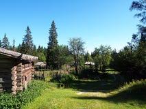 瑞典夏天牧场地Skräddar-Djurberga 免版税图库摄影