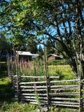 瑞典夏天牧场地Skräddar-Djurberga 库存照片