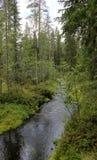 瑞典小河 库存图片