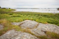 瑞典岩石海岸线 免版税库存图片