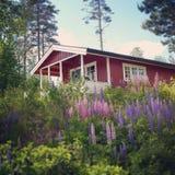 瑞典房子 库存照片