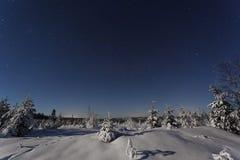 瑞典斯堪的那维亚的美丽的自然和风景照片在冷的冬天晚上 图库摄影