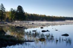 瑞典有雾的早晨 免版税库存图片