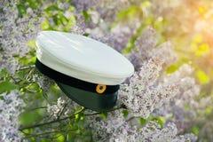 瑞典毕业盖帽 免版税图库摄影