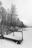 瑞典湖海岸的单色看法在冬时 免版税库存照片