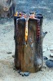 瑞典火炬,在树干的壁炉 图库摄影