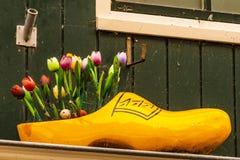 瑞典鞋子安排和郁金香 福伦丹荷兰 免版税库存照片