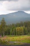 瑞典风景 库存图片