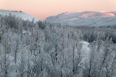 瑞典结冰的小山 库存图片