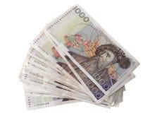 瑞典货币- 1000克朗 库存图片