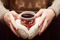 瑞典glogg或被仔细考虑的酒在被编织的手套 免版税库存照片