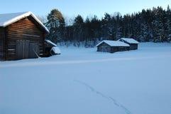 瑞典winterscene 库存图片