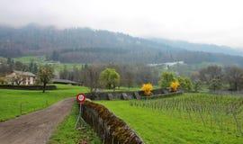 瑞士乡下公路 库存图片