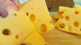 瑞士乳酪切开了成木,慢动作射击 股票录像